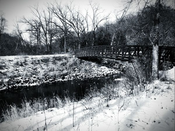 Nature Weather Picturejunkie Water Day Outdoors No People Winter Snow Frozen Pretty♡ Bridge Over Water Blackandwhite