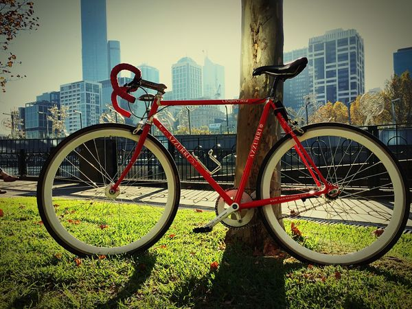 The perfect spot to stop and soak in a beautiful morning. Southbank Singlespeed Cycle Cycling City River