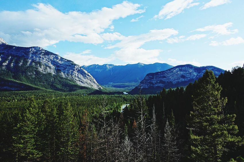 Banff  Alberta Canada Road Tripping Abventure Exploring Travel Wild Landscape River Sky Mountains Forest Nature