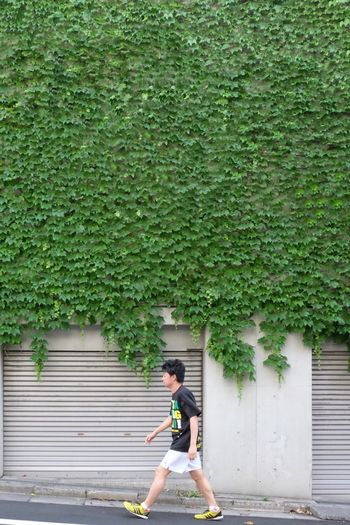 Side view of man skateboarding on plants