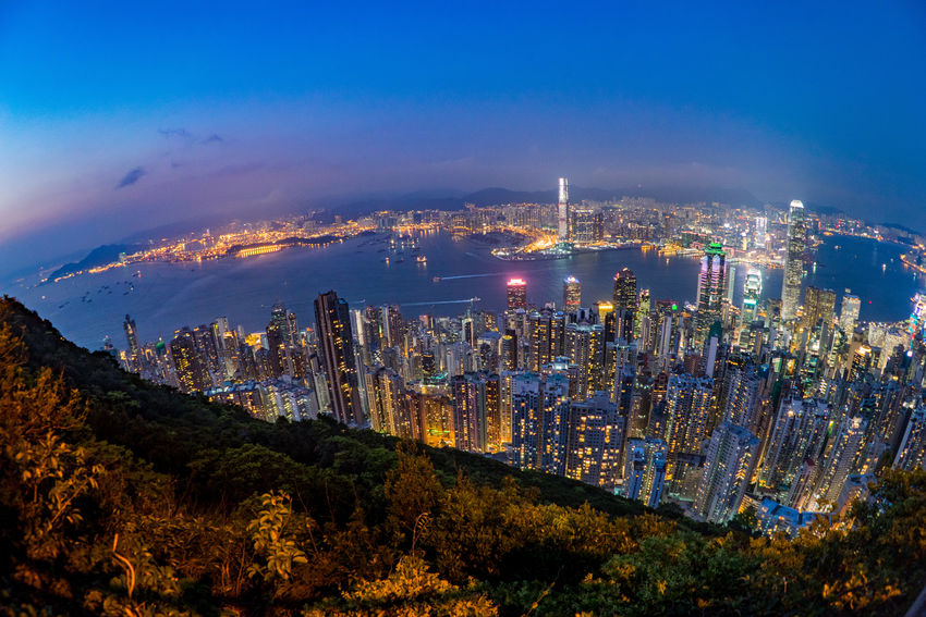 Hong Kong view from the peak nature path. ASIA Cityscape HongKong Travel Aerial View Architecture Building Exterior Built Structure City Cityscape Growth High Angle View Hongkongphotography Illuminated Landscape Landscapes Modern Mountain Nature Night Outdoors Sky Skyscraper Travel Destinations Urban Skyline