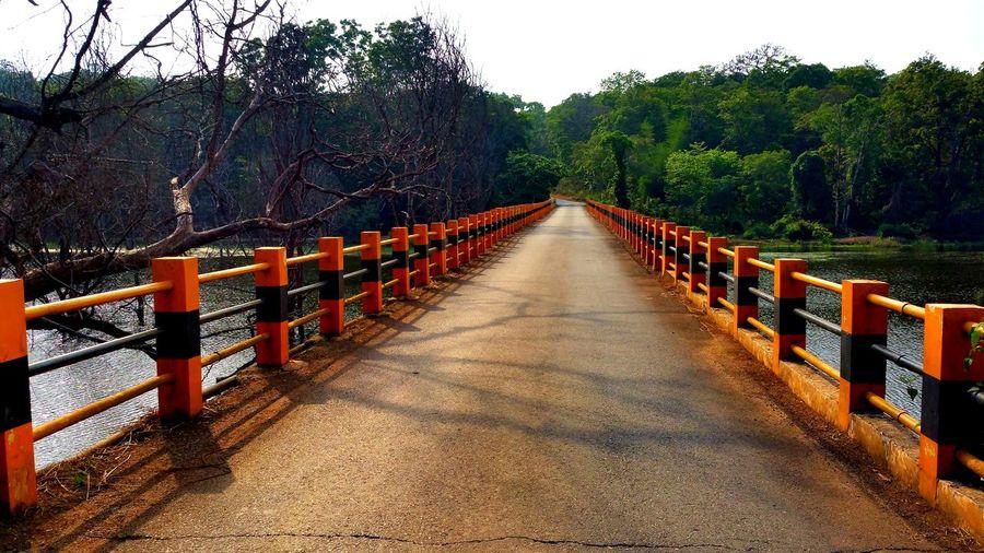 Bridge Outdoors