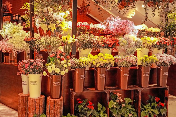 flow store Flowers Flower Background Flower Store Flower Full Frame Plant Single Flower Rosé Plant Life Fragility Dahlia Pollen Various Blossom
