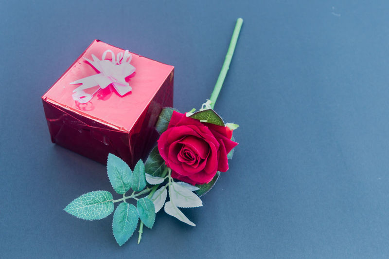 Close-up of red rose on table against blue background