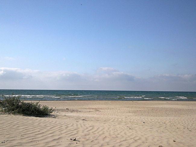 Autumn Beach Beachfront Coastline Horizon October Outdoors Remote Russia Sand Sea Sea & Sky Seafront Seascape Shore Spacious Tranquil Days Tranquil Live Tranquil Scene