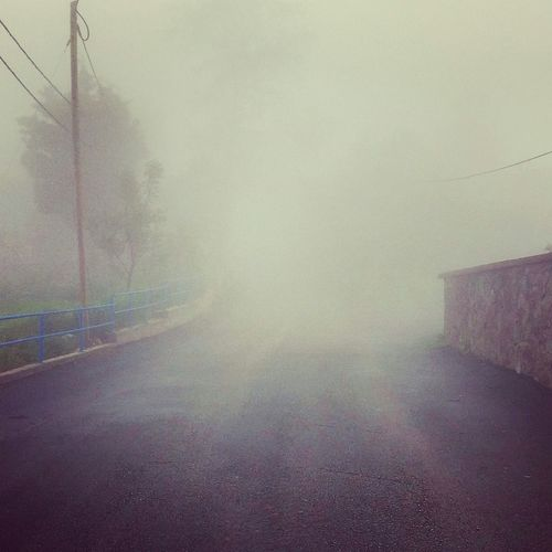 The Great Outdoors - 2017 EyeEm Awards Fog No People Outdoors Day Close-up Nature EyeEm Htcphotography Tokuni HTCDesireEye Unknown Place Unknown Foggy Day Foggy Street Road To Nowhere