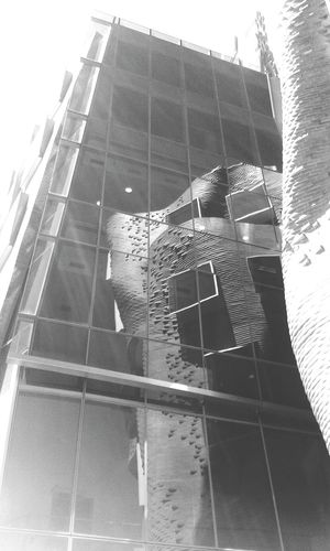 Reflecting Gehry Gehry Uts Architecture Sydney First Eyeem Photo