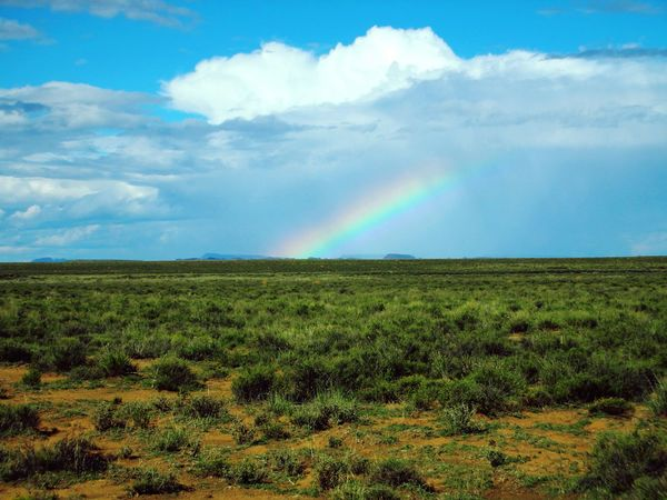 African Landscape Rainbow Field Landscape Cloud - Sky Sky Nature Rural Scene Scenics Weather Agriculture Outdoors Horizon Over Land Beauty In Nature Multi Colored Day Grass Spectrum No People Fragility Cereal Plant Vacation Destination Nature_perfection