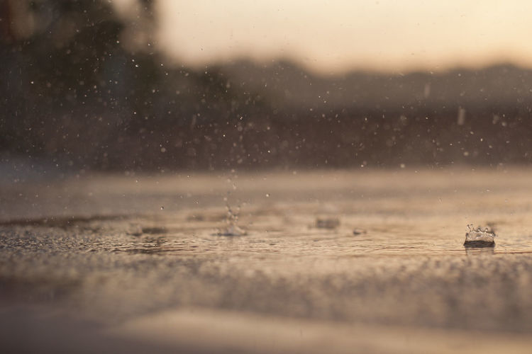 Rain drops falling on street