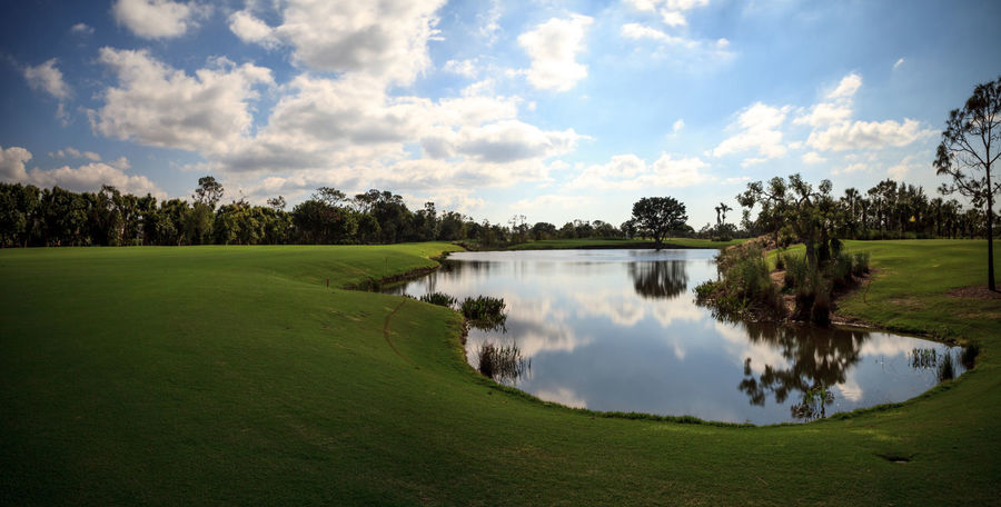 Pond and Lush green grass on a golf course with trees Golf Golf Course Marsh Nature Nature Photography Pond Reflection Blue Sky Garden Golf Game Landscape Landscaping Manicured Lawn Outdoors Outside Putting Green