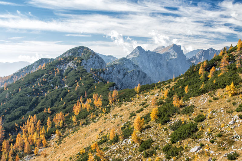 Autumn in Julian Alps in Slovenia Mountain Beauty In Nature Scenics - Nature Sky Plant Environment Landscape Tranquil Scene Cloud - Sky Tree Tranquility Non-urban Scene Nature Mountain Range No People Idyllic Growth Remote Land Outdoors Range Mountain Peak Slovenia Triglav National Park