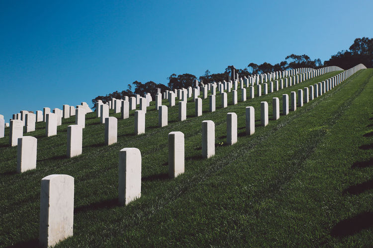 California San Francisco Cemetery Clear Sky Day Grass Grave Gravestone Graveyard In A Row Memorial Military No People Outdoors The Past Tombstone Lost In The Landscape