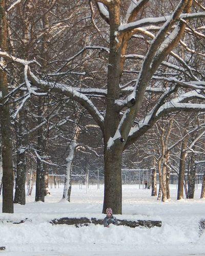 Mazs un liels 👦🌳 Small and large 👦🌳❄❄❄ Mazs Berns Liels Koks Small Child Large Tree Ziema Winter Ziemasprieki Winterjoy Sniegs Snow People Nature Cilveks Daba Balts White Showcase: January It's Cold Outside