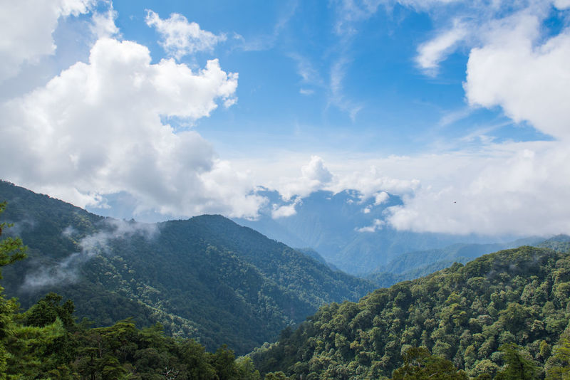 Taiwan Beauty In Nature Cloud - Sky Environment Forest Green Color Idyllic Land Landscape Mountain Mountain Range Nature No People Non-urban Scene Outdoors Plant Scenics - Nature Sky Tranquil Scene Tranquility Tree Valley 台灣 大雪山