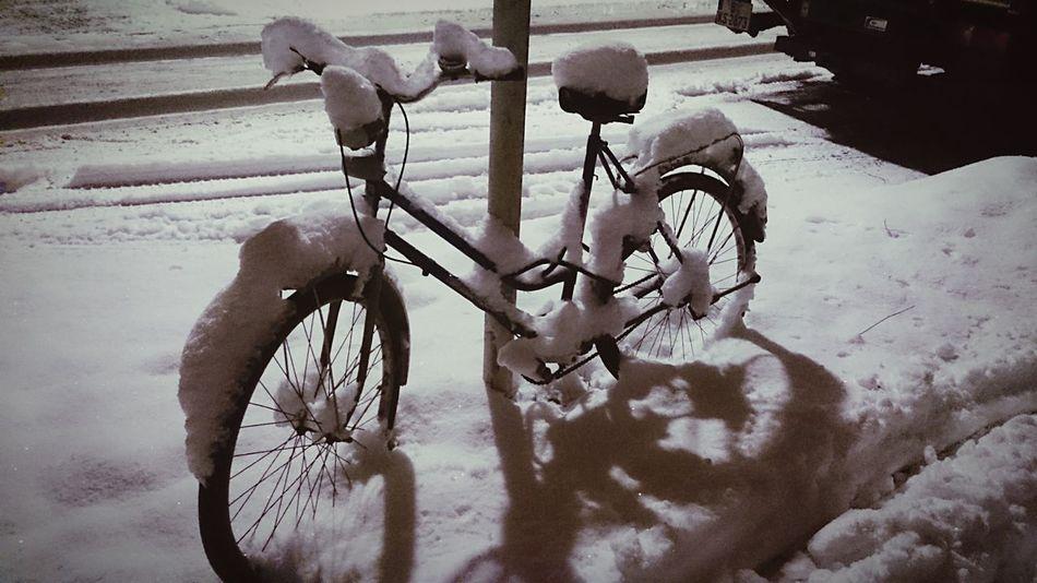 Fahrrad fahren ? Wintertime Winter Winterwonderland BikeNight Bicycle Bicycles Snow ❄ Snow Frosty Cold Winter ❄⛄
