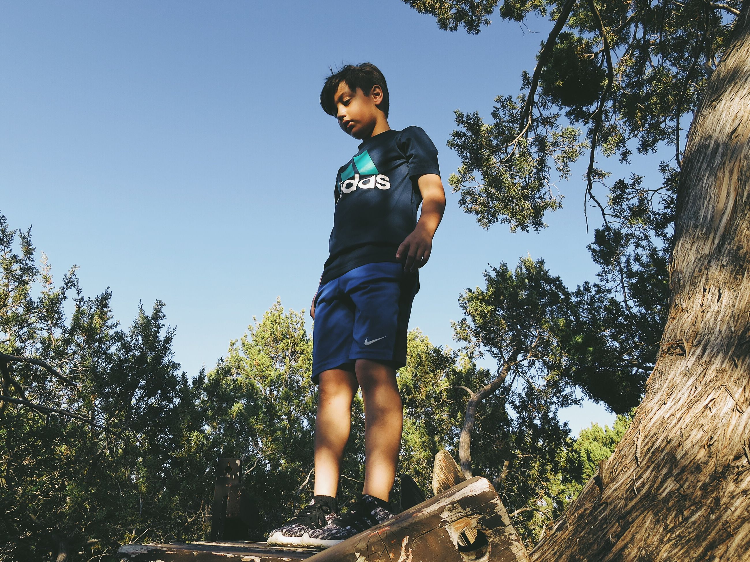 one person, tree, vitality, child, low angle view, day, outdoors, adventure, sky, full length, lifestyles, childhood, real people, sport, summer, jumping, people, nature, young adult, adult, athlete