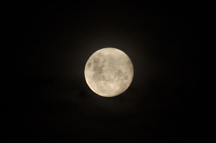 Moon Night Space Moon Astronomy Sky Planetary Moon Circle Full Moon Beauty In Nature Moon Surface Majestic