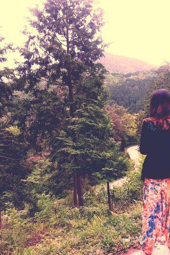 Naturelover Ontheroad Feelingfree