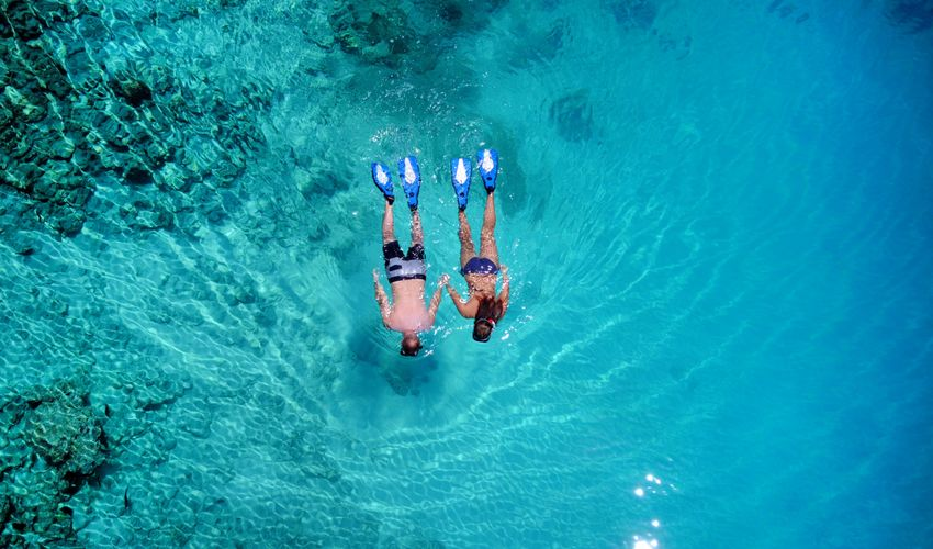 Couple snorkeling in the sea surrounded by coral reef, top aerial view Maldives ocean Snorkeling Couple Top View Coral Reef Romantic Maldives Dive Summer Swimming Honeymoon Crystal Clear Waters Turquoise Water Fun Sea Ocean Happy Relaxing Blue Bird's Eye View Marine