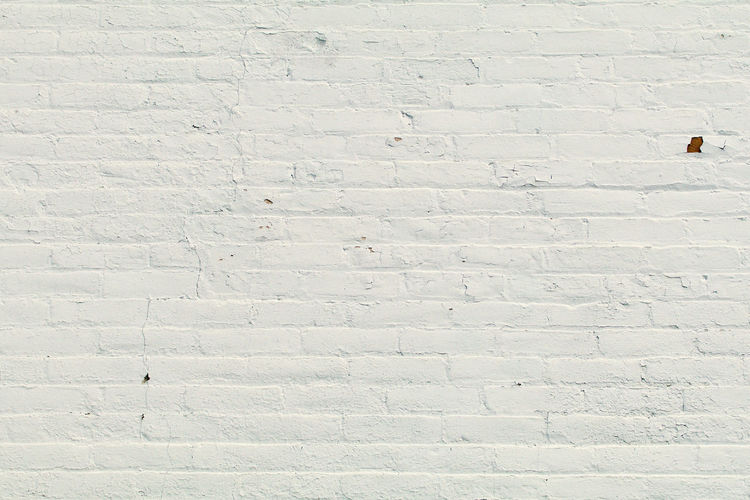 Shadow of person on white wall