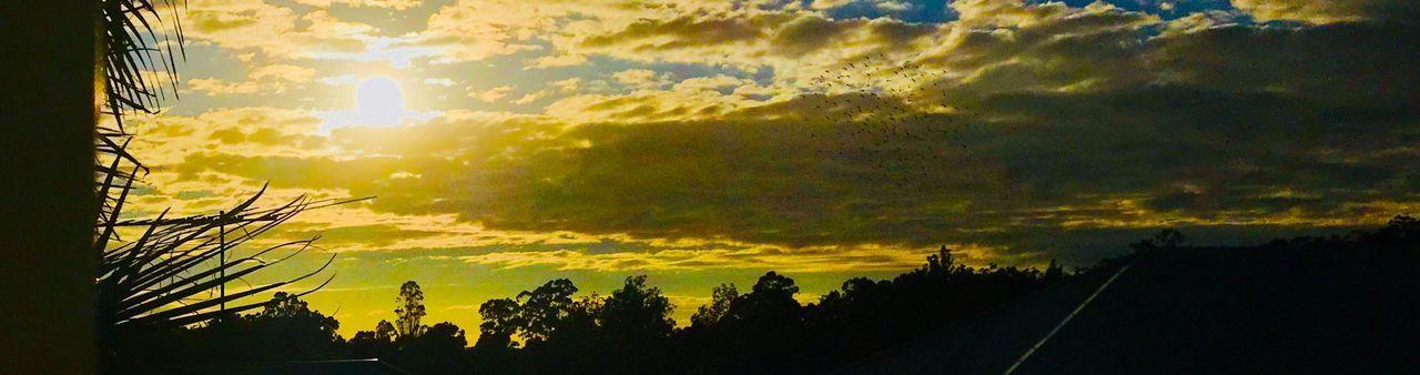 My Sunrise