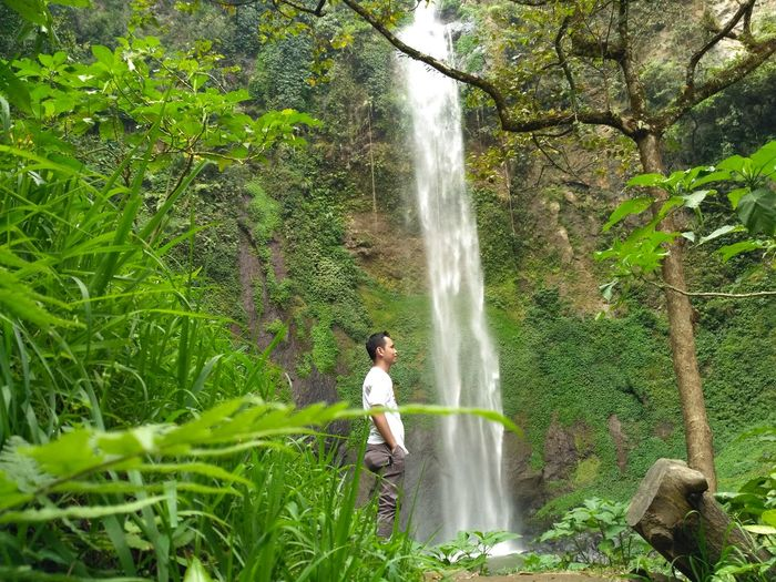 Side view of man standing against waterfall in forest