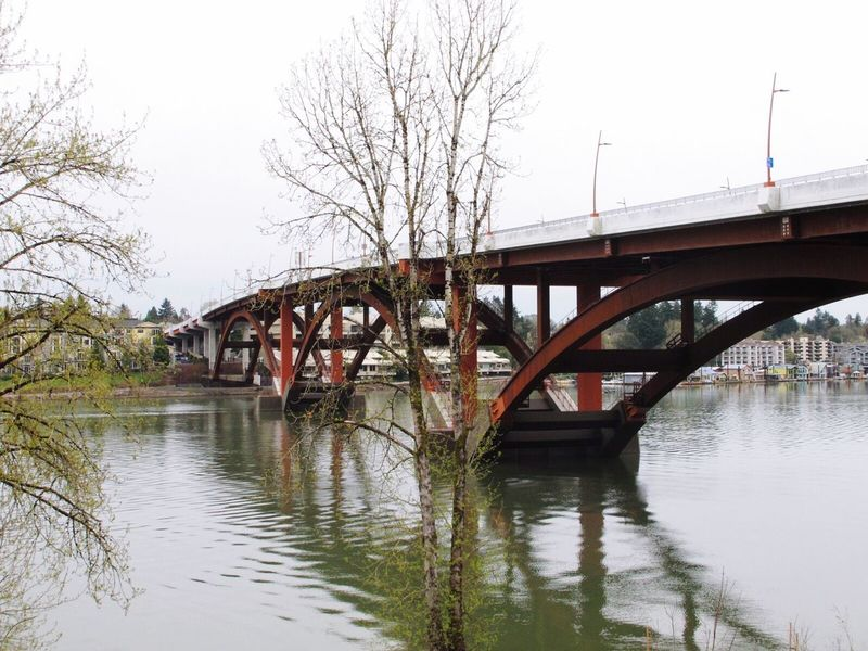 The bridge 2 Bridge - Man Made Structure Connection Built Structure River Water Transportation Architecture Waterfront Outdoors Engineering Day Railroad Bridge Nature Railway Bridge No People Sky Tree