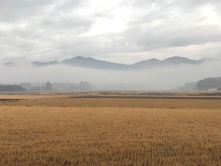 朝もやの足尾山と加波山 加波山 足尾山 朝もや Landscape Nature Mountain Beauty In Nature Tranquil Scene Field Tranquility