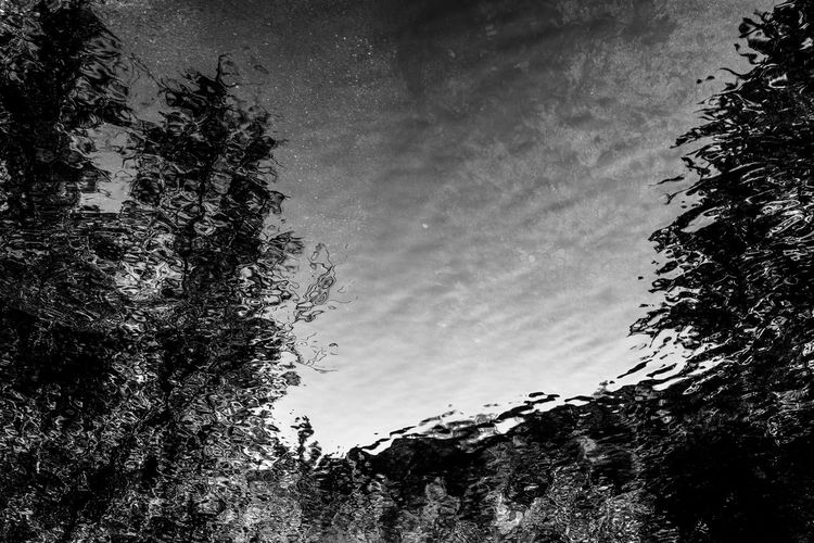 Abstract Photography Abstracto Arboles Beauty In Nature Black And White Blanco Y Negro Nature No People Rio River Tranquility Tree Traveling Home For The Holidays