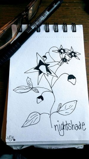 Paper No People Penandinkdrawing Flowers Drawing Is My Other Passion EyeEmNewHere