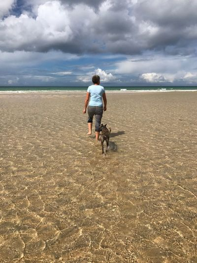 Walking in the sea with miles of shallow Cornwall Beaches Copy Space Golden Sands Shallow Waters Blue Sky Dog Cloud - Sky Land Rear View Sky Full Length Real People Leisure Activity One Person Walking Lifestyles Beach Sand Tranquil Scene Outdoors Sea