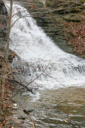 Waterfall, Spillway, Crooked Creek Lake, Indiana Tree Water Motion Day Forest Plant Land Nature Beauty In Nature No People Environment Scenics - Nature Flowing Water Outdoors Waterfall River Blurred Motion Long Exposure Waterfront Flowing Waterfalls Spillway