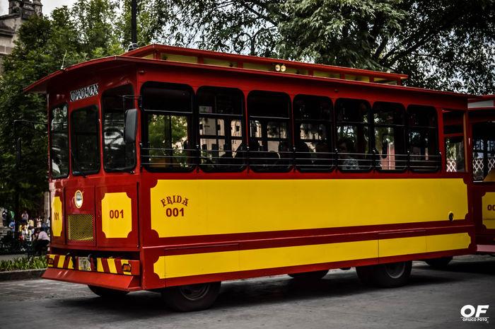 OfiucoFoto FelizShooting Relaxing Turism Turismo Cdmx Mexico City Coyoacán Train Vía Viaje Light Day Sun Frida 001