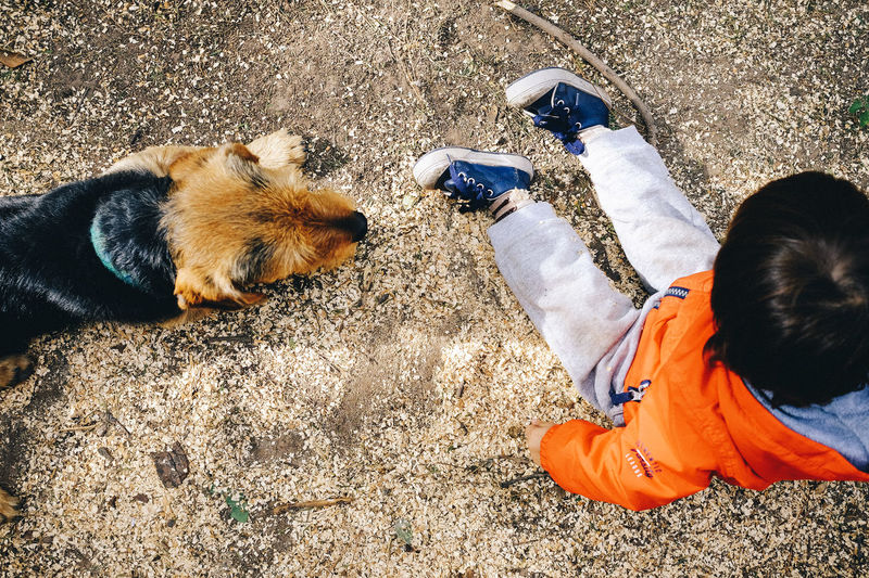 High angle view of man with dog on street