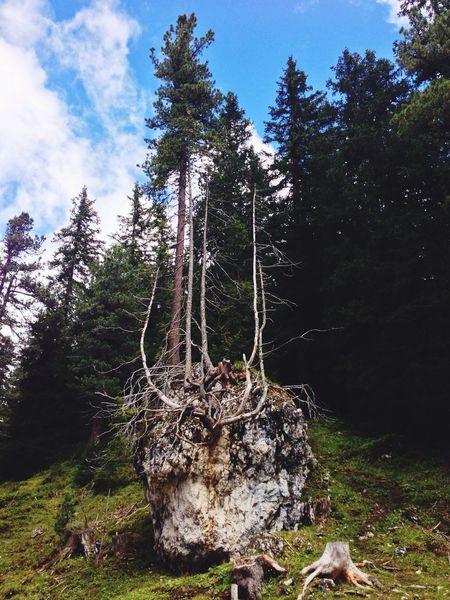 Dolomites, Italy Walking Around