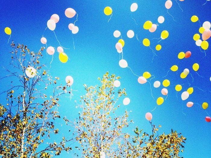 Baloons 風船 バルーンリリース Wedding Wedding Party