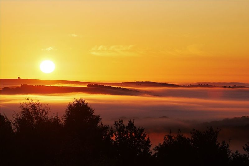 ... as viewed from my bedroom window (2017) EyeEm Nature Lover Nature Beauty In Nature Fog Foggy Idyllic Landscape Luxemburg Nature Naturelovers No People Orange Color Scenics Silhouette Sky Sun Sunrise Tranquil Scene Tranquility Tree Wahlhausen Eisleck