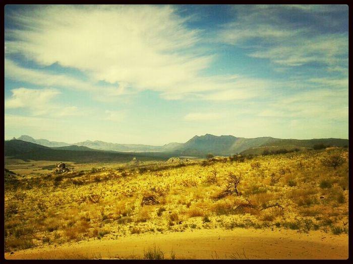 4x4 great scenery* @ KleinTafelberg WestCoast South Aftica Nature Adventure ◇