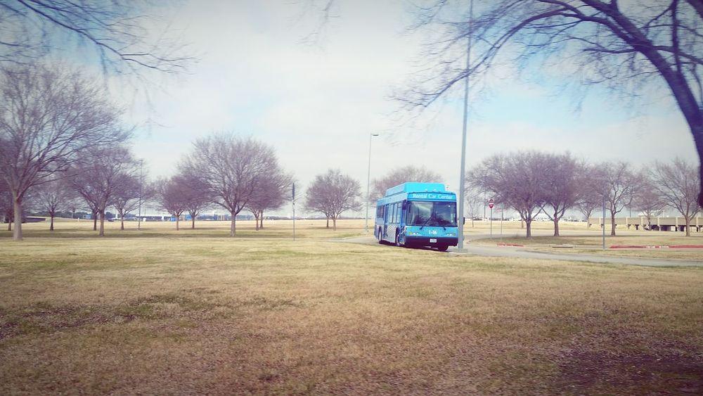 Showcase: February Bus Public Transportation Warm Spring In Winter Blue Sky Blue Taking Photos
