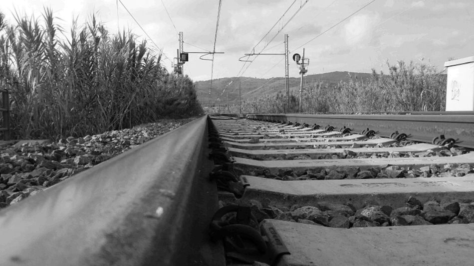 Color Palette Black And White Photography Blackandwhite Treno Traintracks Railroad Track