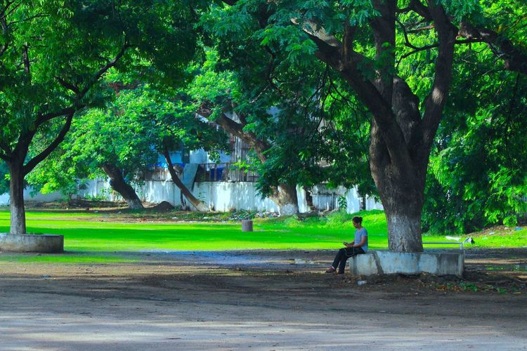 Mumbai Tree Outdoors Nature Real People One Person Beauty In Nature Mumbai Monsoon Self Centre Self Dating Gadgets Laptop Refreshing :) Cheering ♥ Life Is Beautiful Investing In Quality Of Life