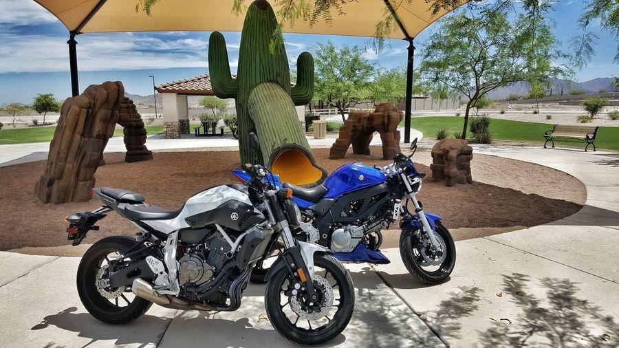 2015 Yamaha FZ-07 and 2005 Suzuki SV650 Cactus Desert Fz07 Motorbike Motorcycles Ride Suzuki Sv650 Yamaha
