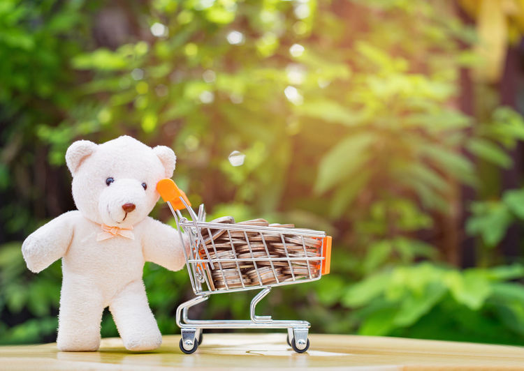 Cute bear doll and the shopping cart full fill with coins on green background, save money concept Basket Coins Consumerism Day Nature Outdoors Plant Representation Savings Shopping Shopping Cart Teddy Bear Toy