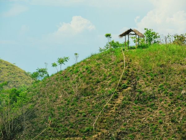 Up the Hill Hill Tree Agriculture Rural Scene Irrigation Equipment Sky Cloud - Sky Green Color Plant