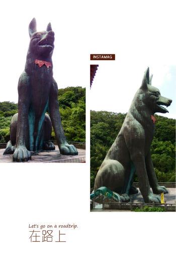 登愣!!!巨犬 十八王公 石門區