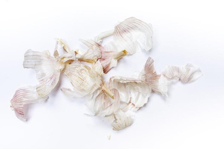 Garlic bumpy (