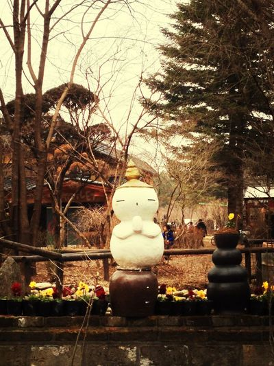 3 weeks ago, at Nami Island.