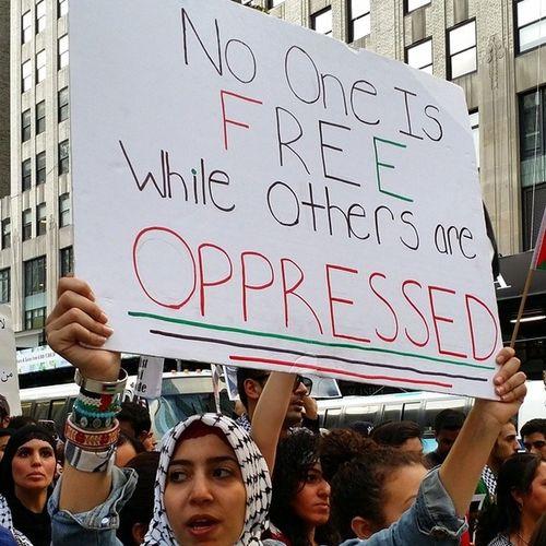 No One Is Free While Others Are Oppressed Freegaza Freepalestine Nyc4gaza ISupportGAZA