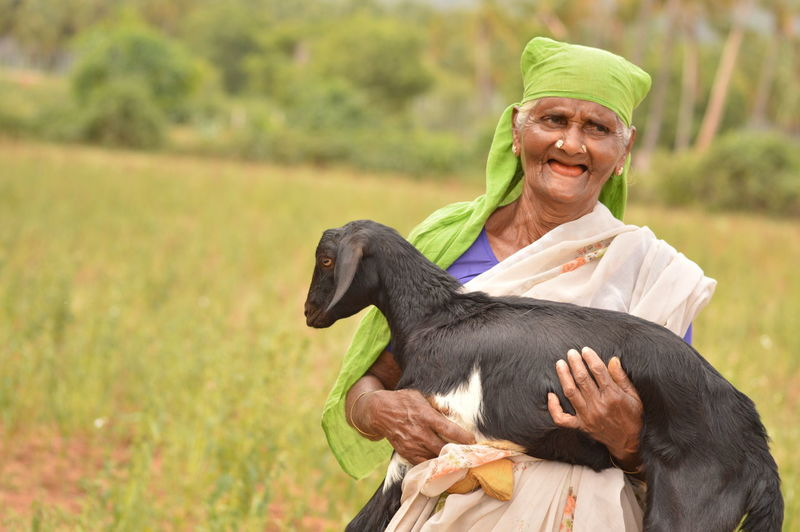 Happy senior woman holding goat while standing on field