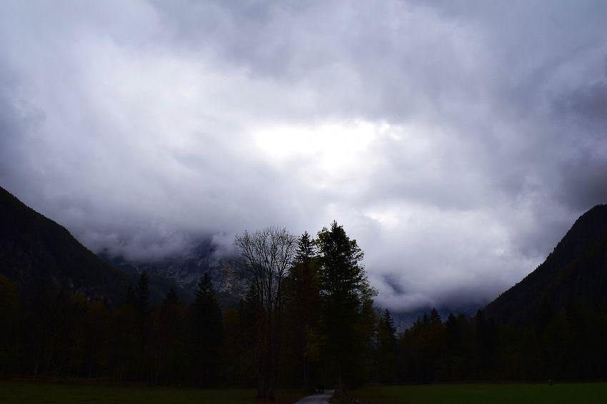 Slovenia Logarska Dolina Nature